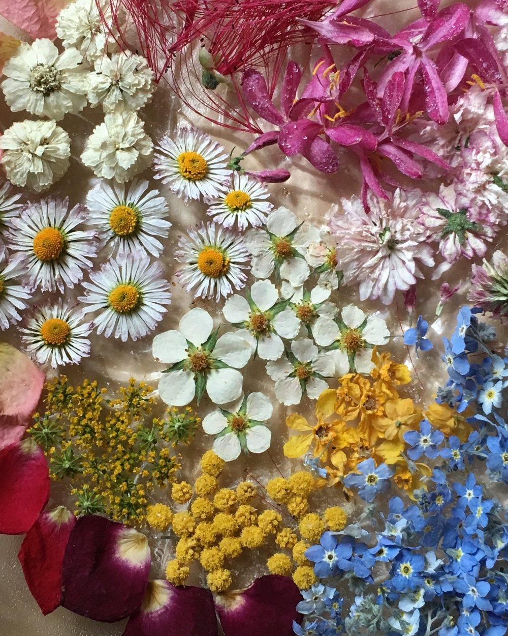 dried flower palette