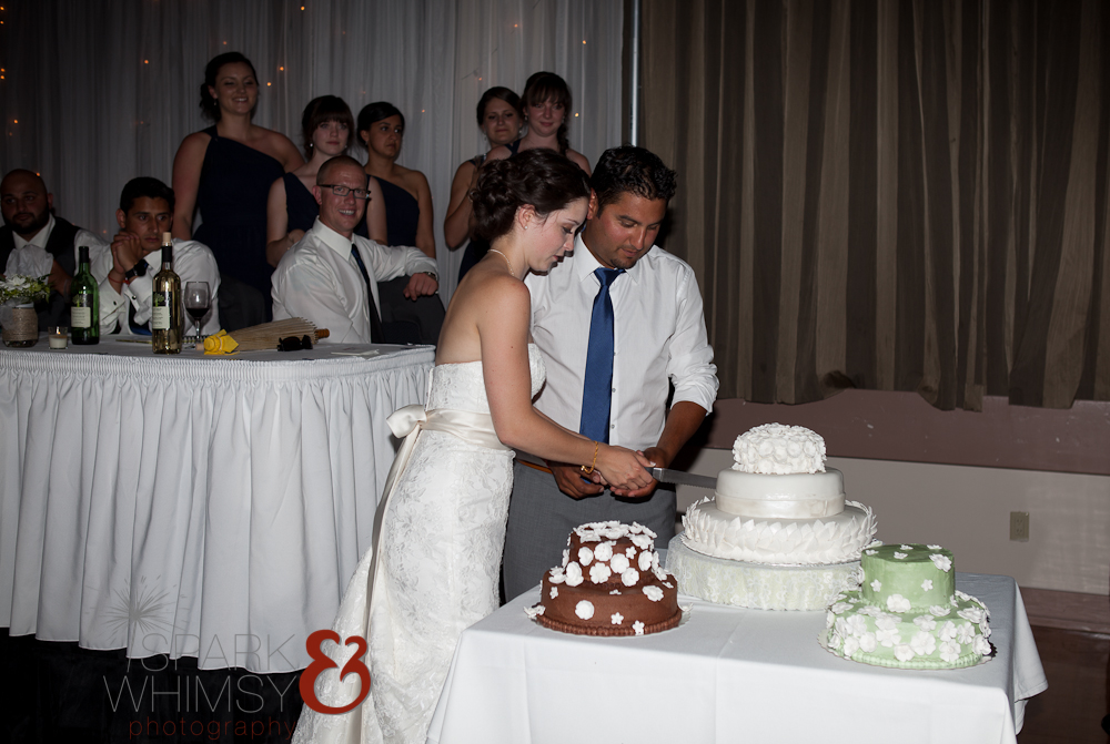 CSWedding (2333 of 521).jpg