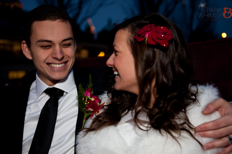 WinterWedding2014-1353-Edit.jpg