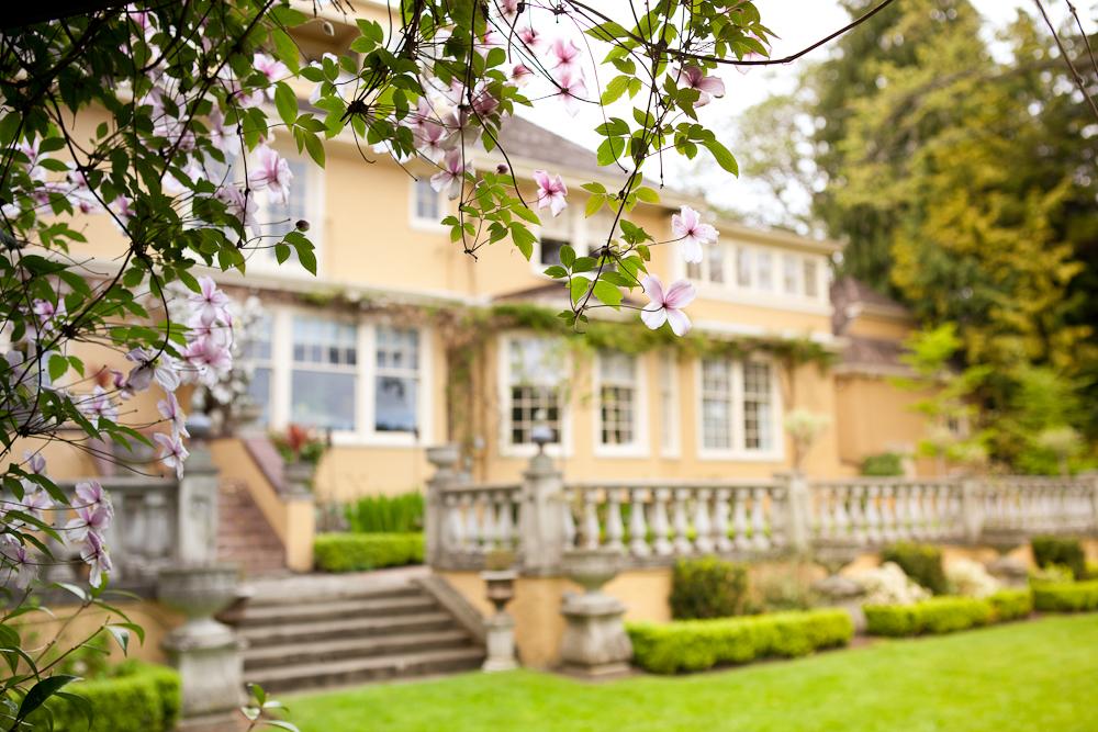 Spring flowers at Villa Marco Polo Inn, Victoria BC