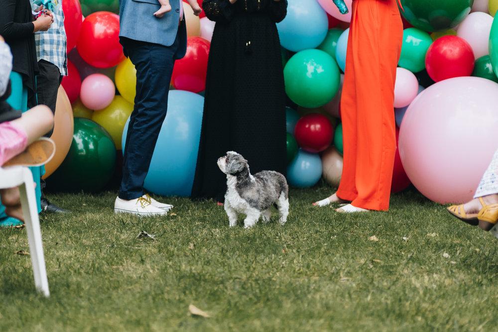 themchartmorts-wedding-blog-2017-52.jpg