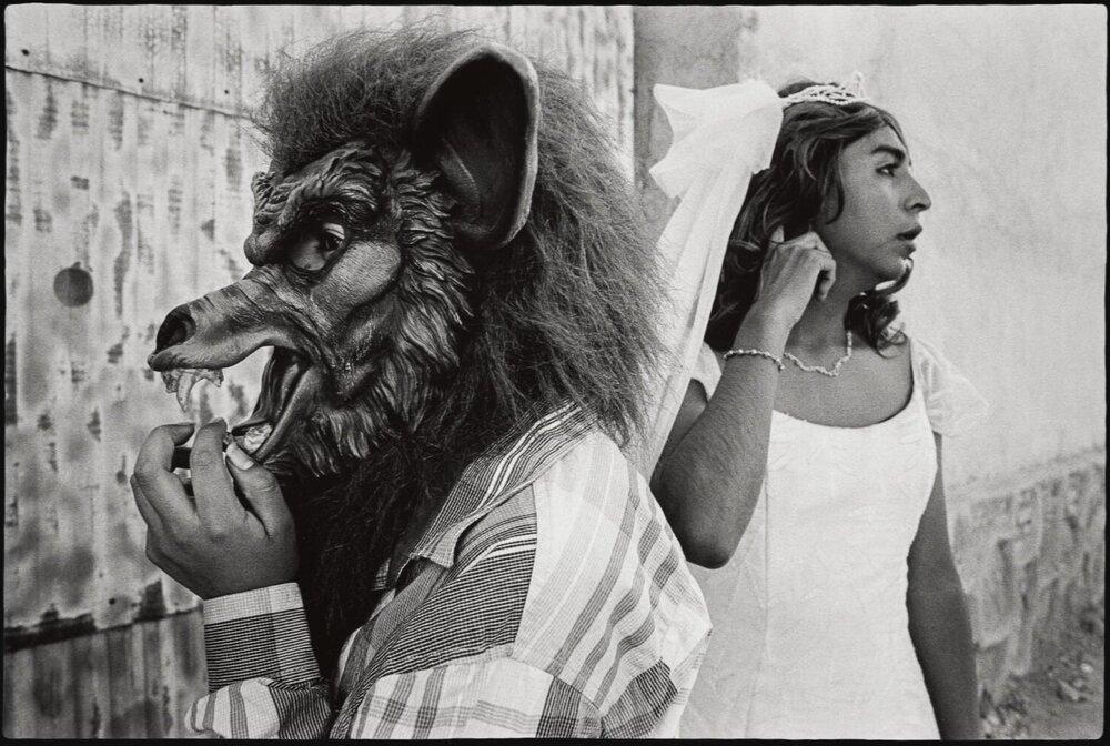 1_Bride and wolf, San Martin Tilcajete_2015.jpg