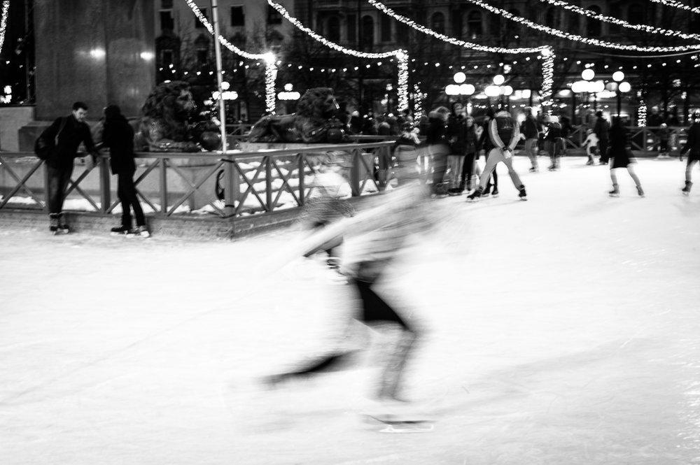 Toothless skate princess-3.jpg