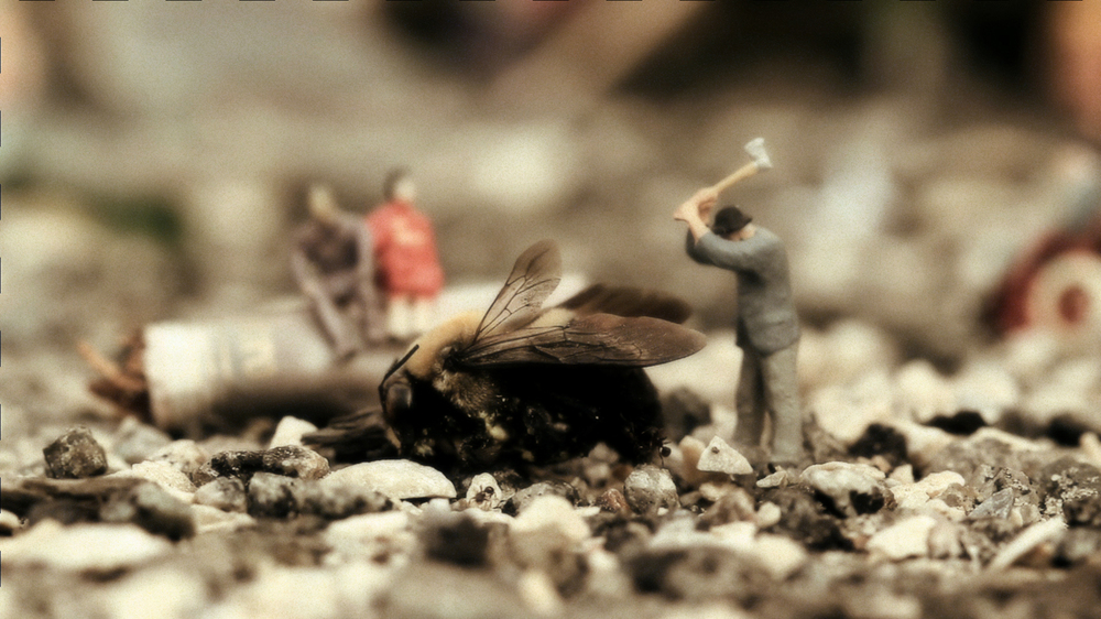 SS- Bee.jpg