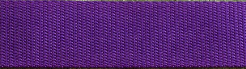 1 Inch Purple W1-17