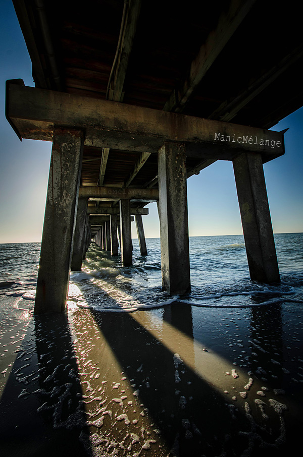 Peeking Under the Sea // Naples Pier: Naples, FL