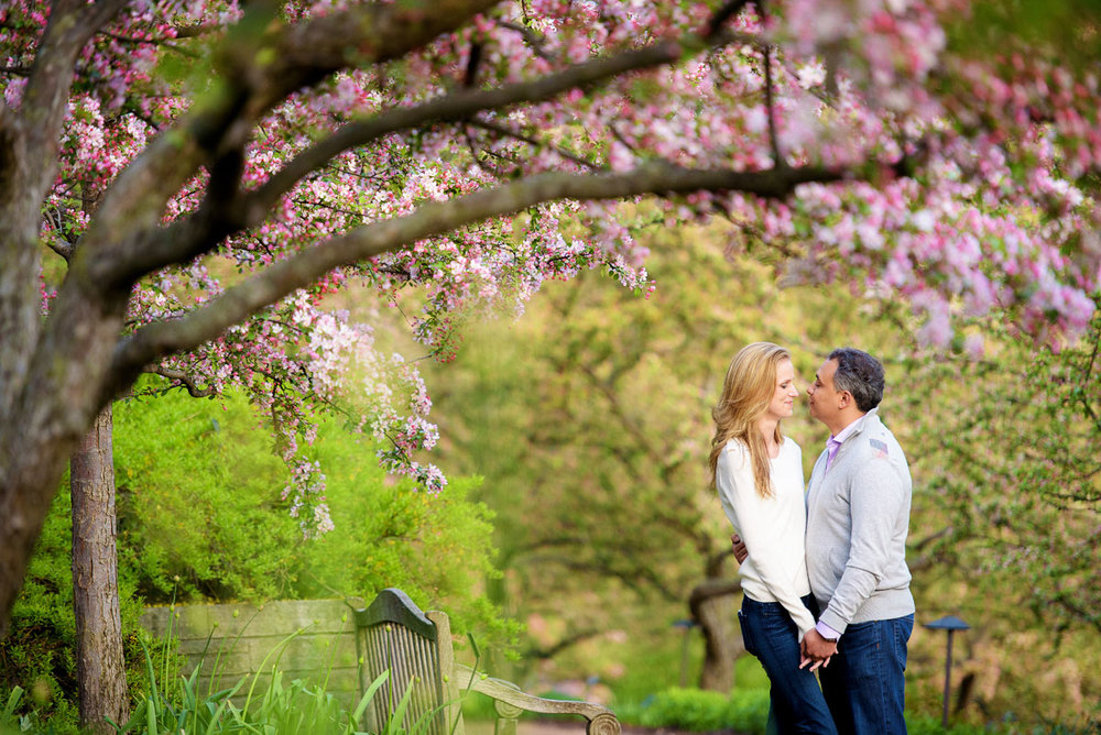 The couple is framed by flowers in bloom at the Chicago Botanic Gardens during their engagement session.