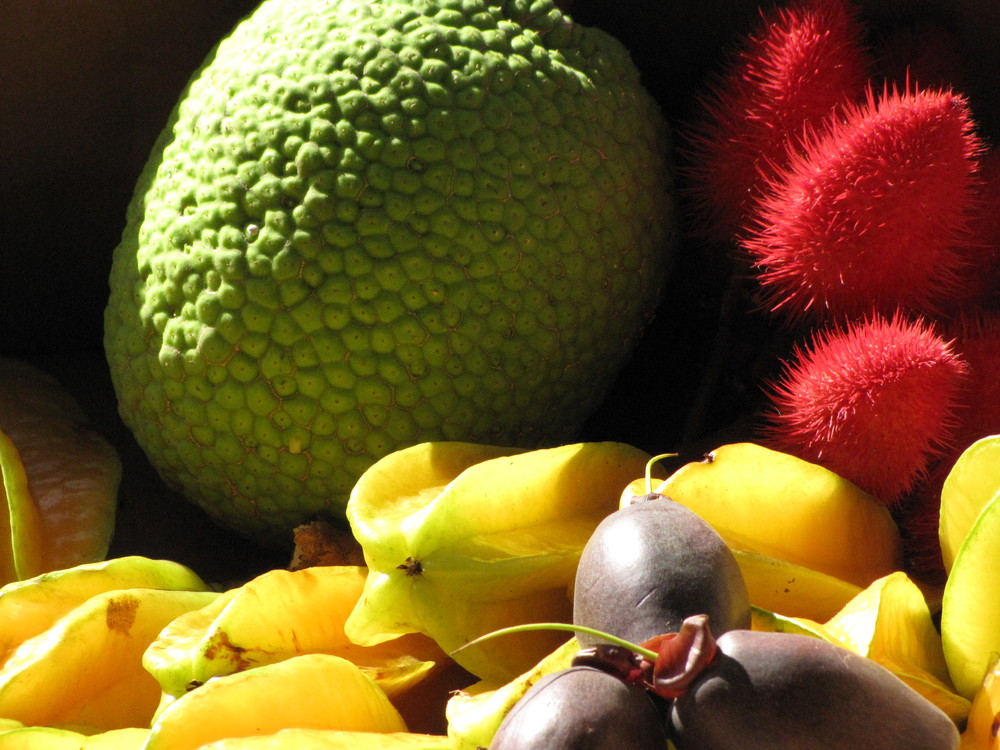 Breadfruit and other tropical delicacies. Image courtesy of Kim Starr.