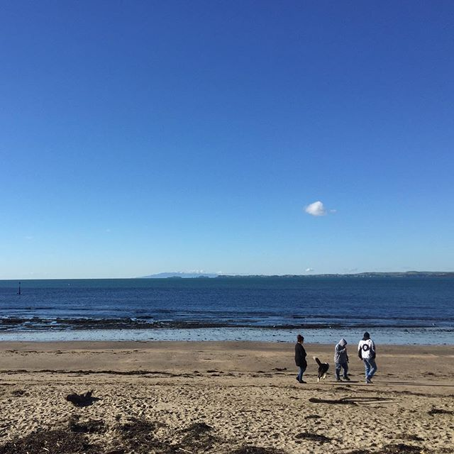 Enjoying the winter sun ☀️ #milfordbeach #auckland #newzealand #wintersun #feelinggrateful