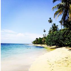 ORANGE+BEACH.png