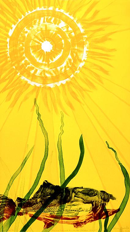 """Blazing Sun And Protector Salmon  Spirit"""