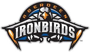 Ironbirds.jpeg