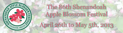 Apple Blossoms.jpeg