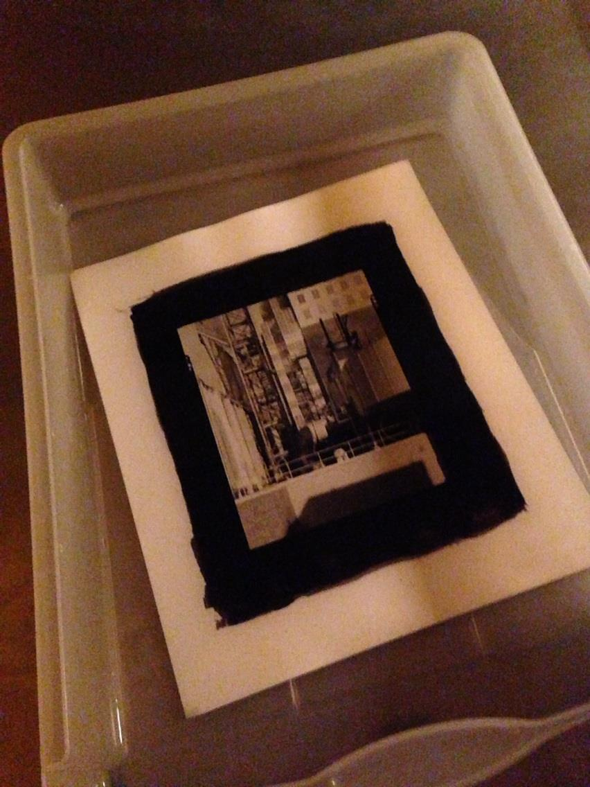 Printing the Palladium Prints