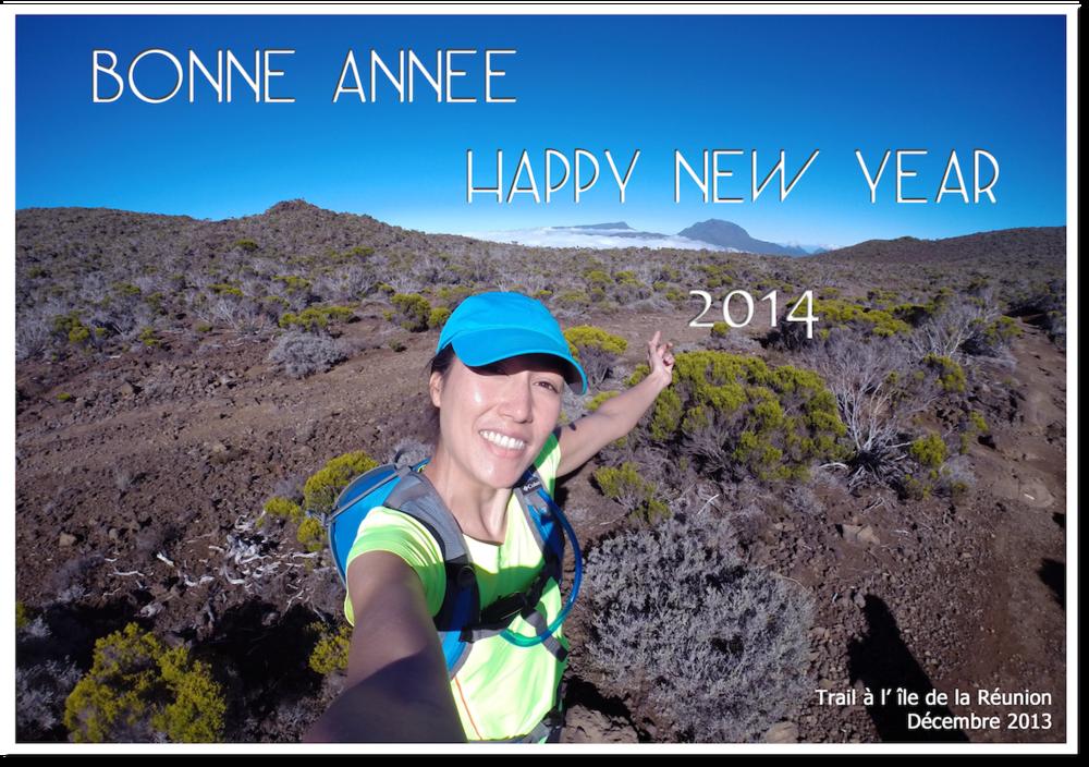 Bonne année 2014.png