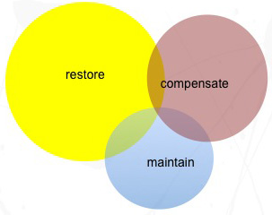 Figure 1. Venn Diagram representing distinct treatment philosophies in brain injury rehabilitation