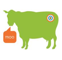 cow-branding.png