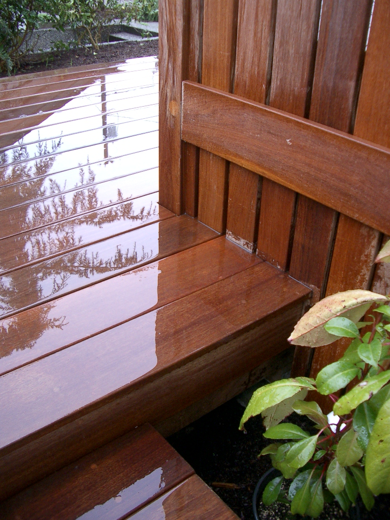 IPE Deck - Detail.JPG