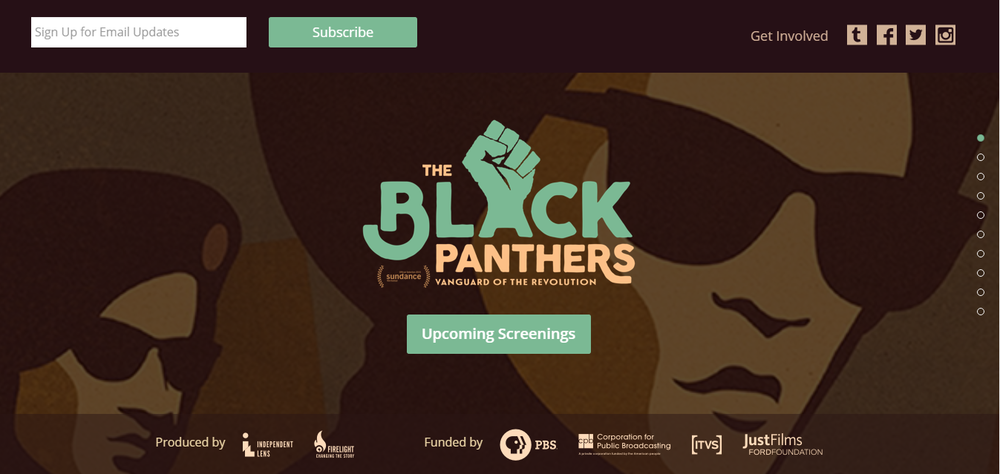 Click here to go to TheBlackPanthers.com