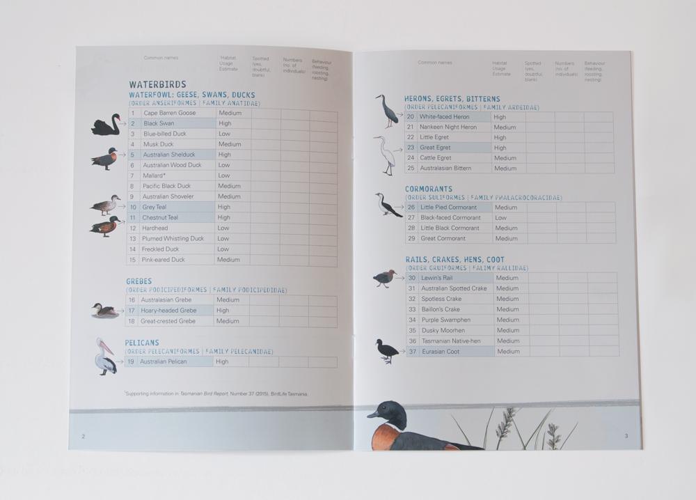 Bird-checklist.png