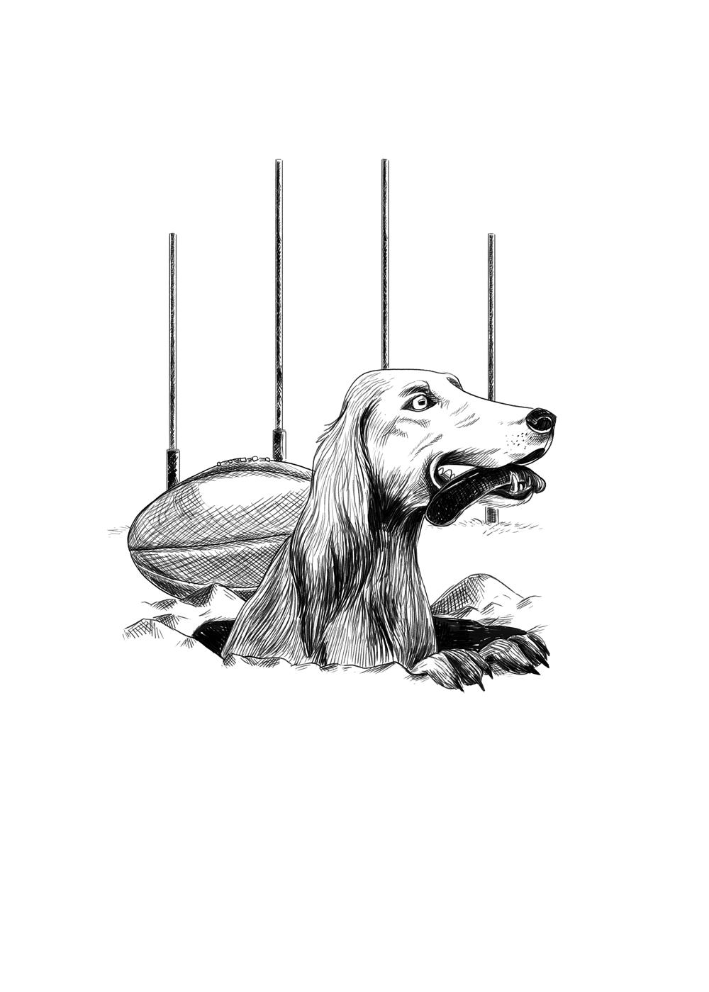 Saveloy-Dog.png