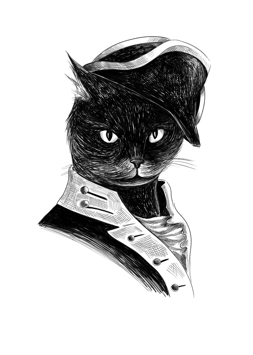 Trim-the-cat.png