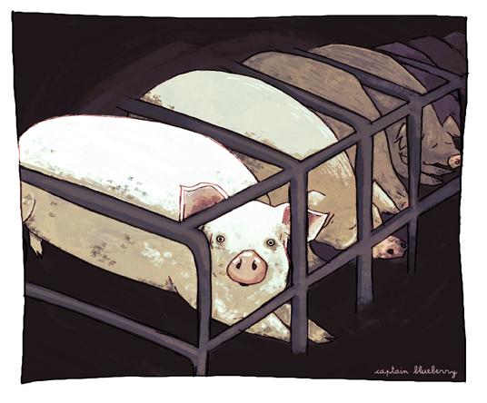 pig-farming.jpg