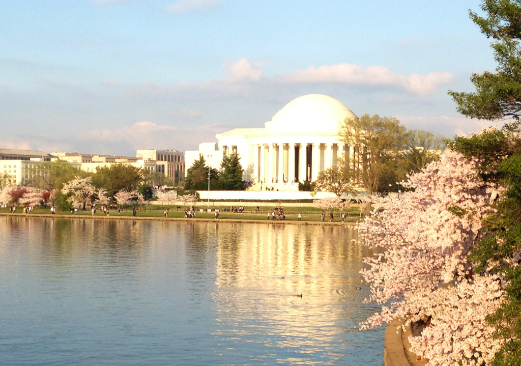 Spring has made its way to Washington, DC