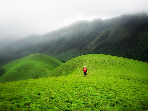 cosmek :     Munnar, India (by  davе )