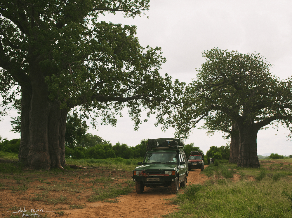 Zambia_ 0002.jpg
