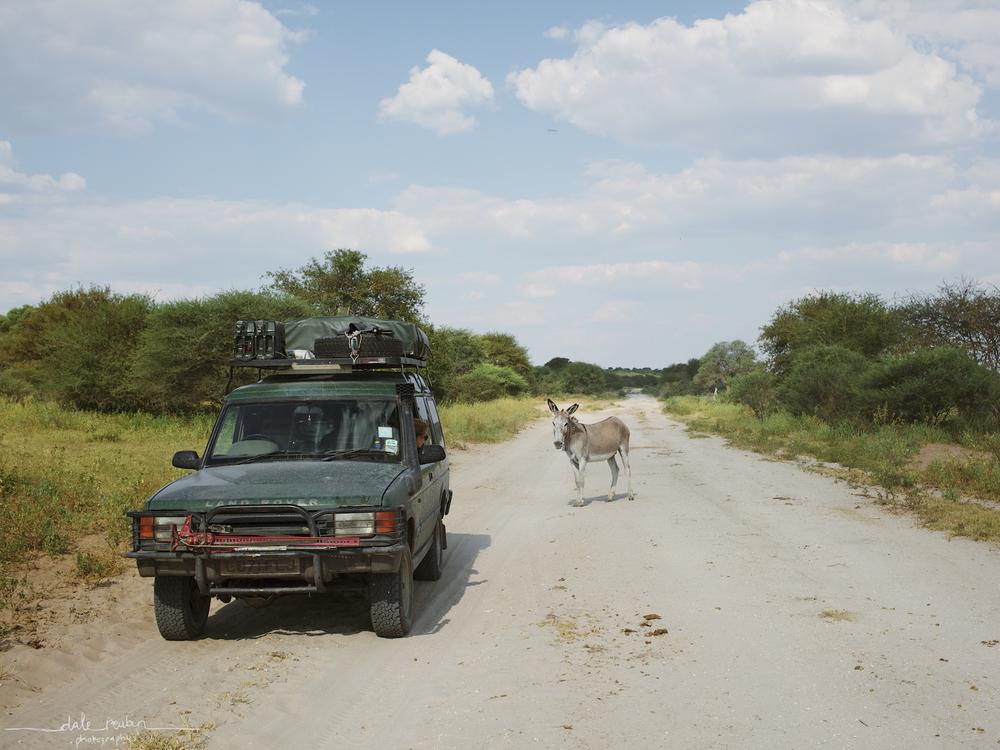 Botswana_ 0018.jpg