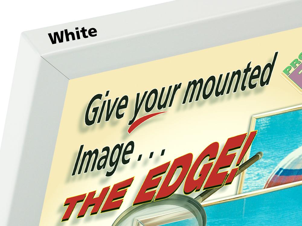 3-8 in long white only.jpg