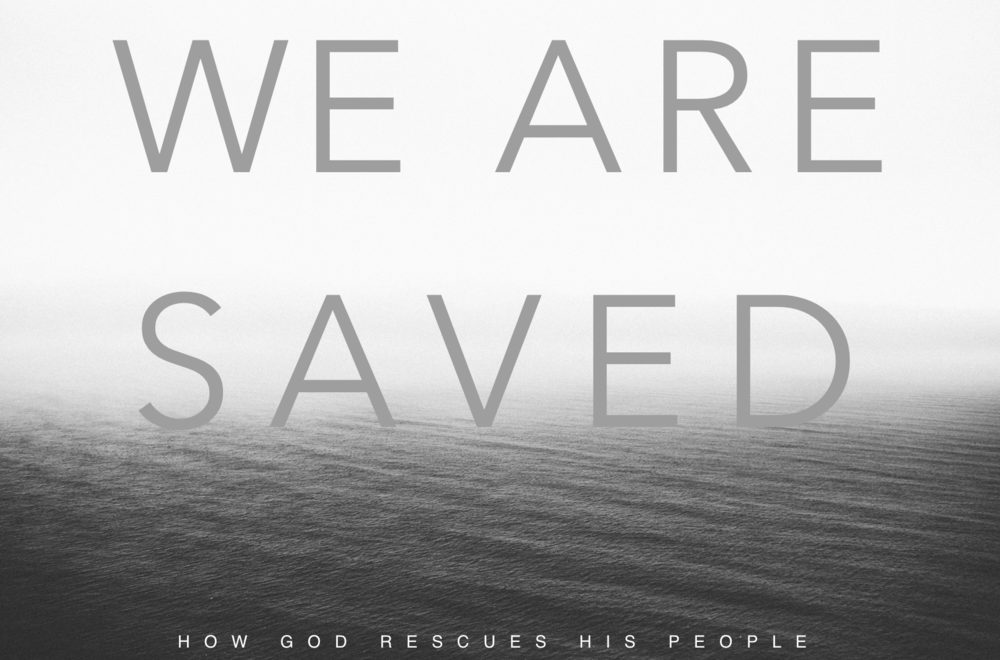 We Are Saved: January - February 2015