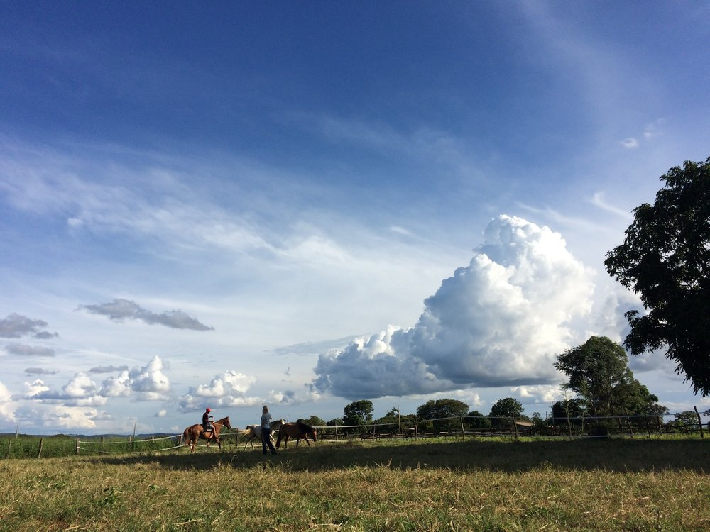 A photograph from Brazil, at Fazenda Cavalos Selvagems (Wild Horses Farm) where I've been shooting a documentary since 2010. The amount of footage is amazing. Daunting. Just like the skyscape.