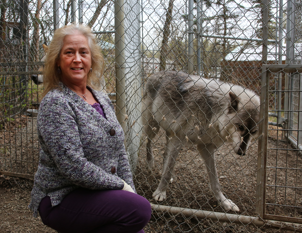 wolf 9.jpg