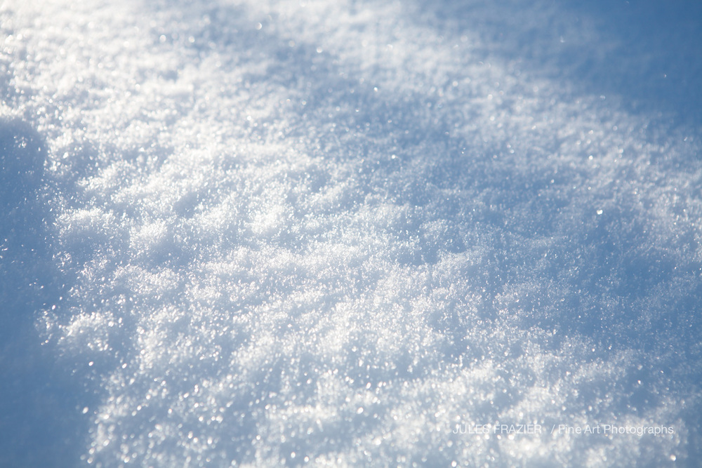 Jules Frazier Fine Art _08-02-19-104-White Winter.jpg