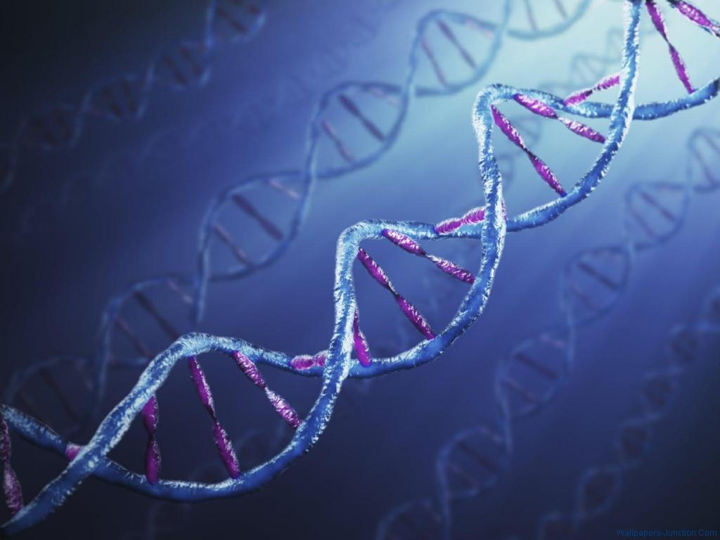 DNA Wallpaper