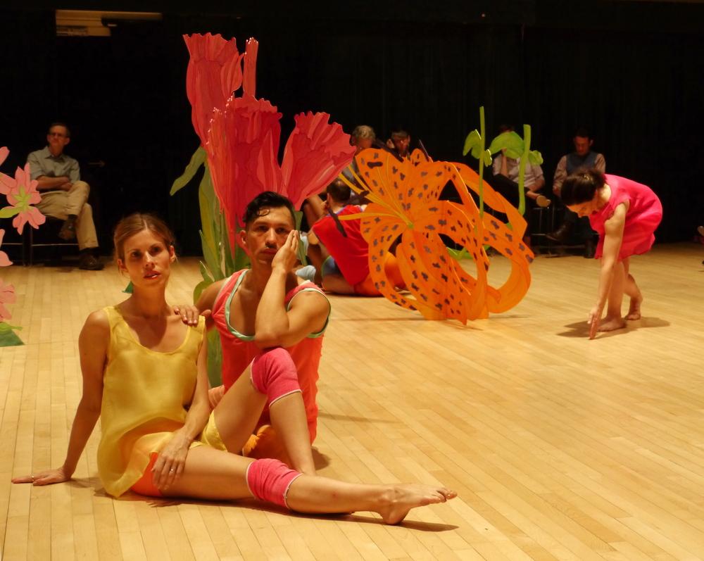 Cassations, Douglas Dunn & Dancers, 2012
