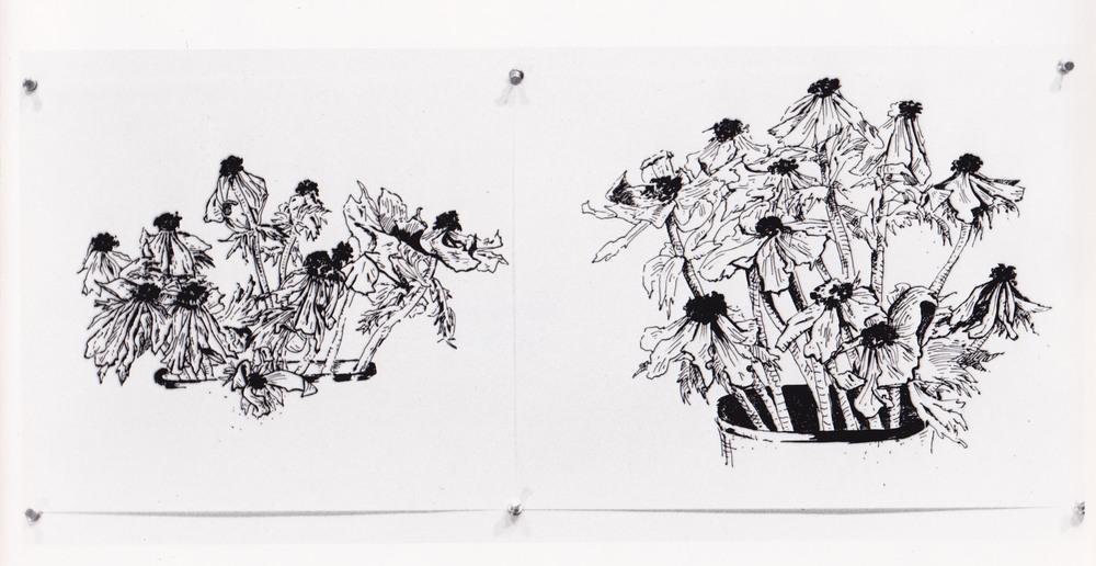""""""" (2), 1977.jpg"""