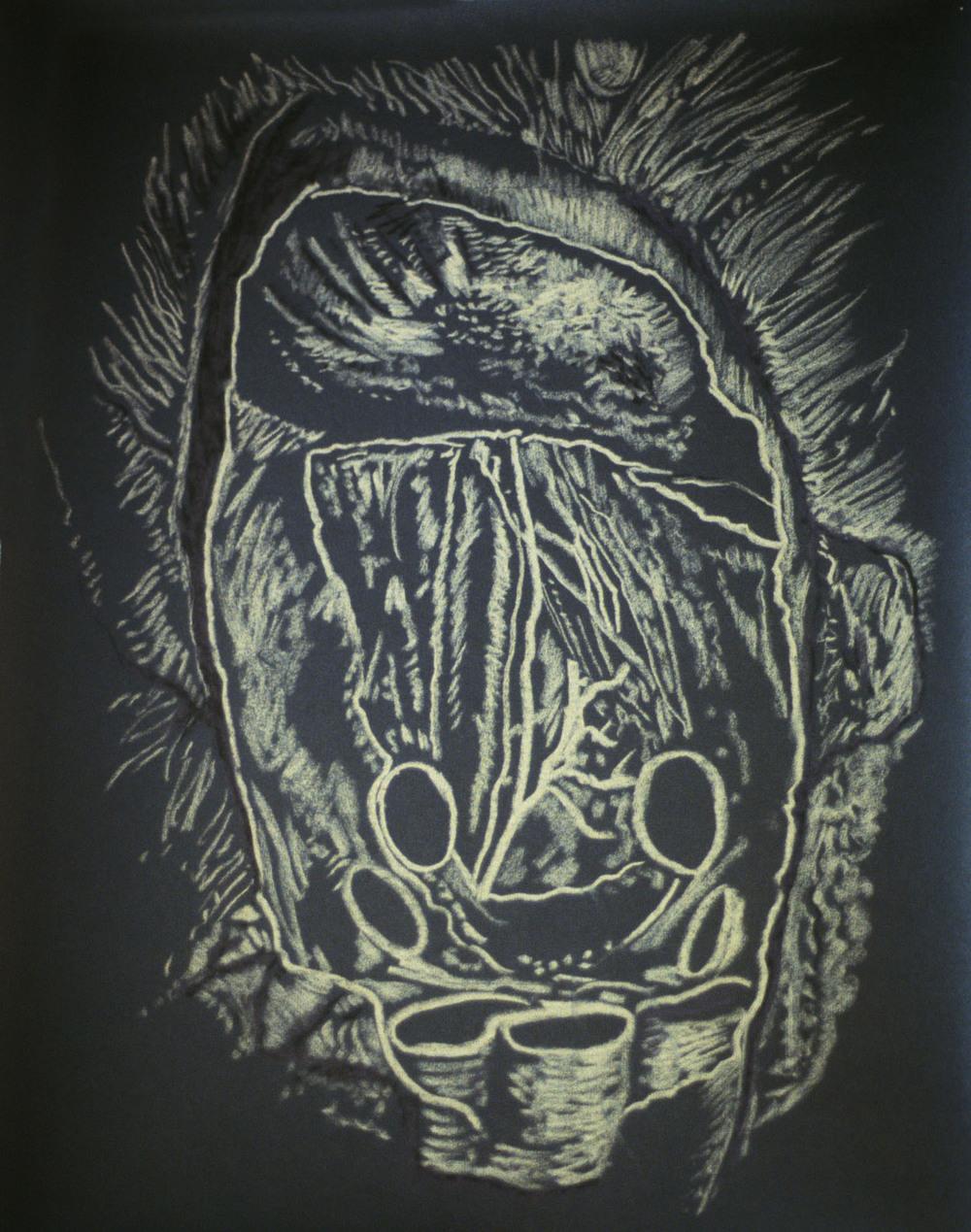 Mimi.Gross.anatomy.040.jpg