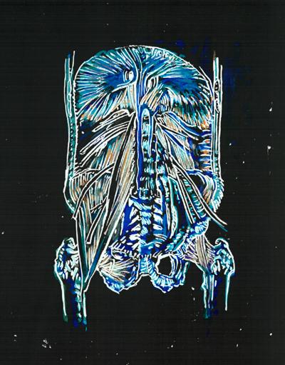 Mimi.Gross.anatomy.043.jpg