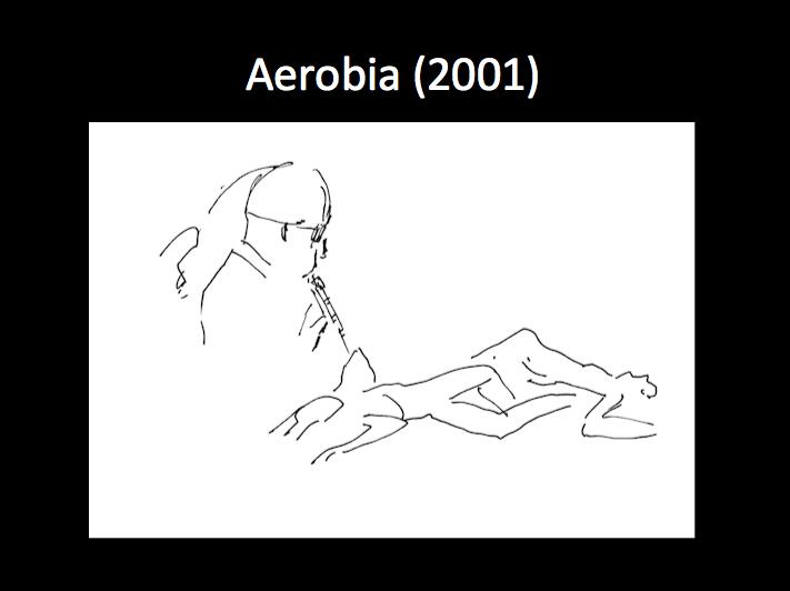 MG_Aerobia_2001.png