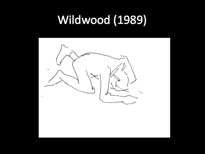 MG Wildwood 1989.png