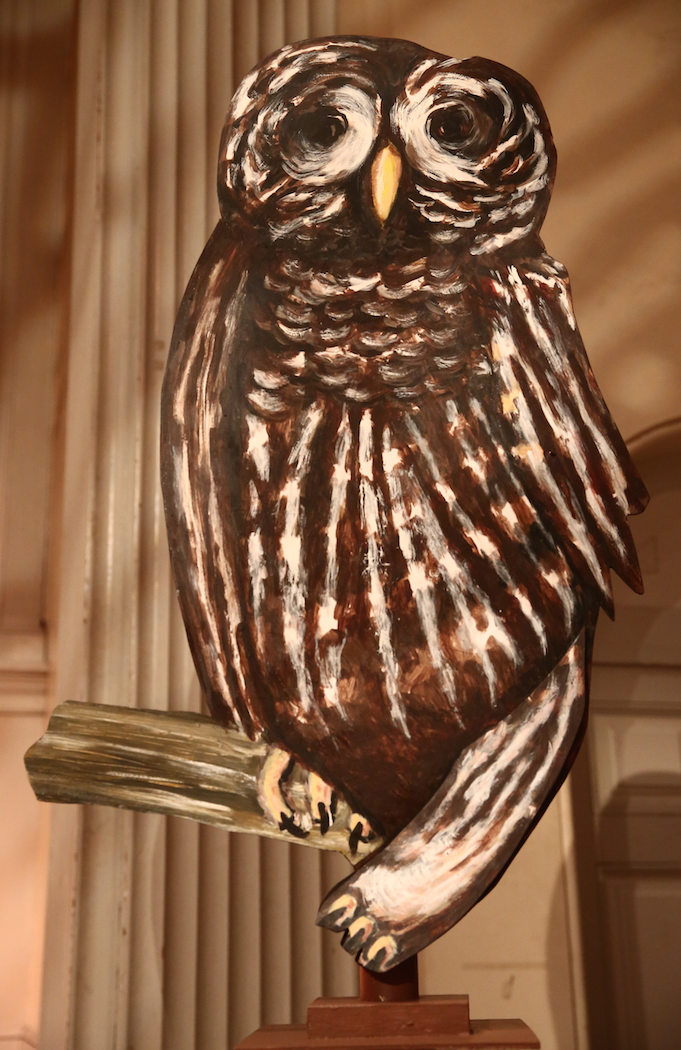 MG Owl.png