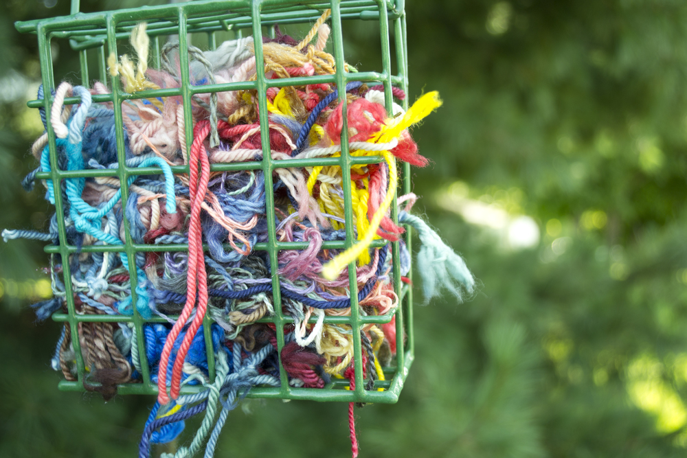 Yarn shown in a suet cage.