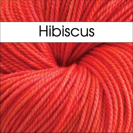 Anzula Cricket Hibiscus