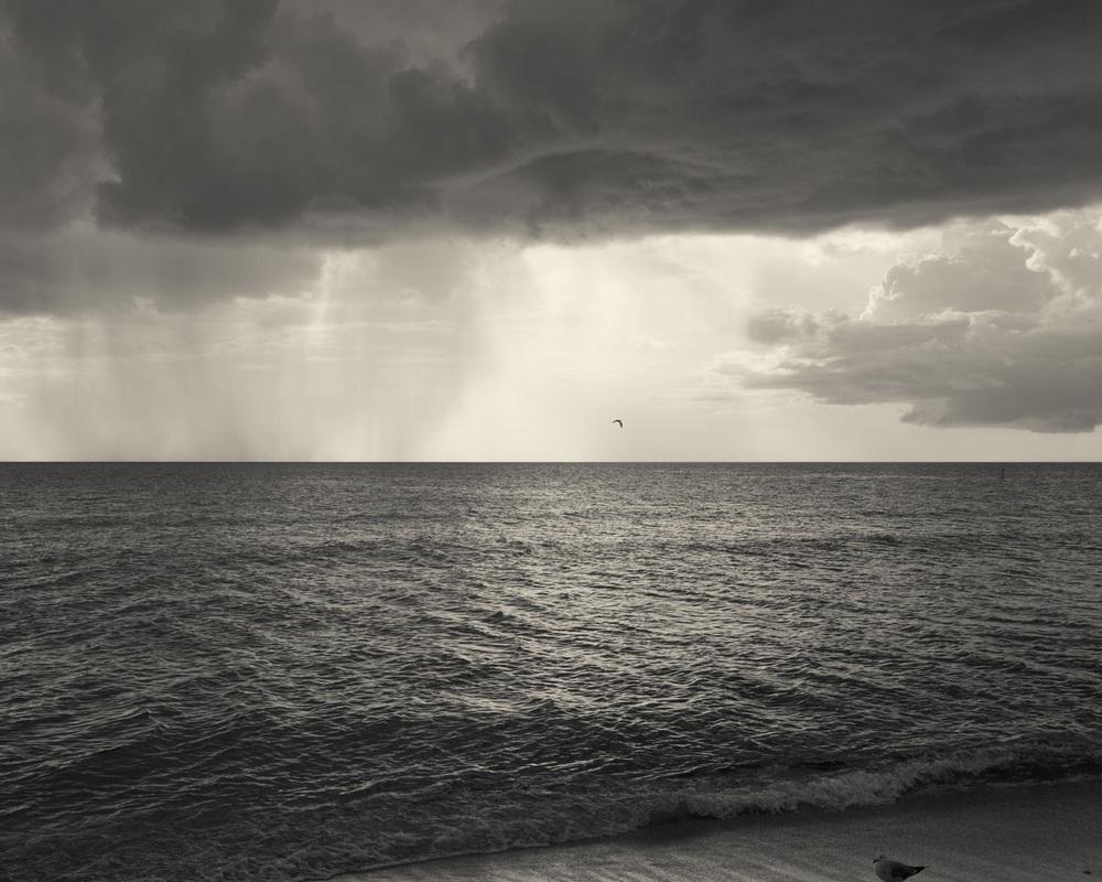 rain-8752.jpg