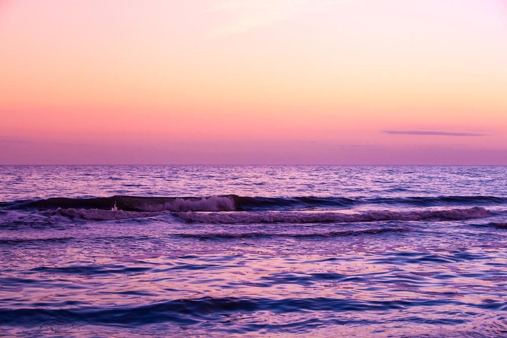 wild_dream-ocean-1303-9100.jpg