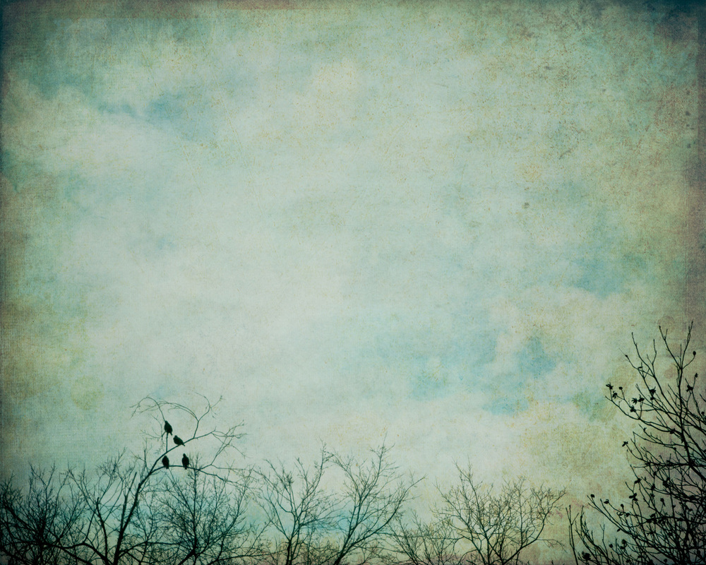 four-birds-4x5r-2950.jpg