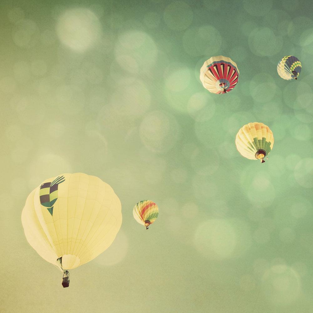 hot_air_balloon-3207.jpg
